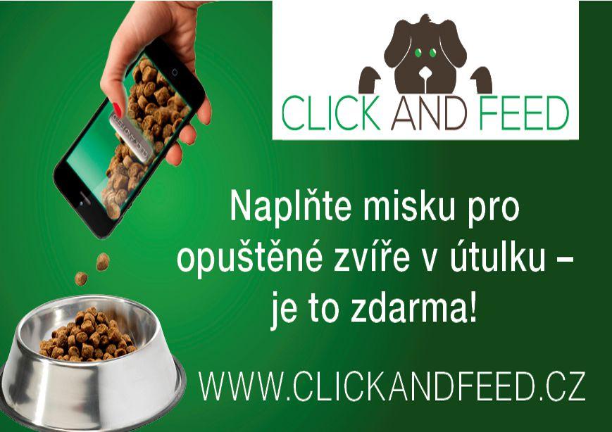 Naplňte misku pro opuštěné zvíře v útulku - odkaz na stránku clickandfeed.cz