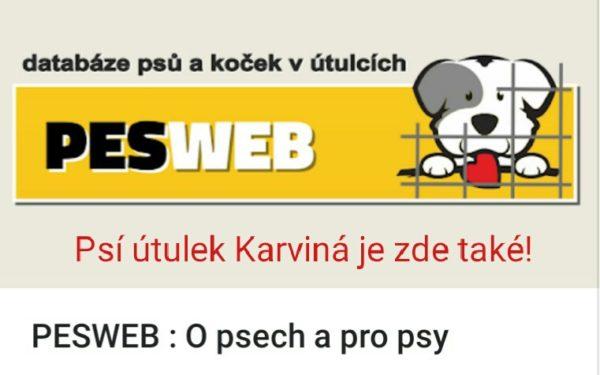 Banner s logem webu www.pesweb.cz - databáze psů a koček v útulcích