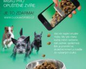 Click and feed - Naplňte každý den misku pro opuštěné zvíře